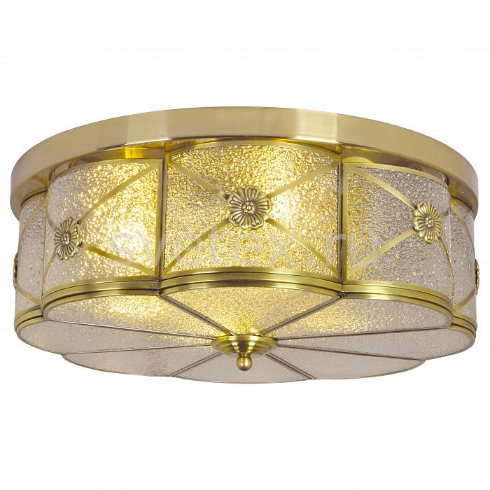 Фото Накладной светильник Arte Lamp Gunter A9055PL-4AB