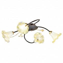Потолочная люстра FavouriteНе более 4 ламп<br>Артикул - FV_1601-4C,Бренд - Favourite (Германия),Коллекция - Edera,Гарантия, месяцы - 24,Высота, мм - 140,Тип лампы - компактная люминесцентная [КЛЛ] ИЛИнакаливания ИЛИсветодиодная [LED],Общее кол-во ламп - 4,Напряжение питания лампы, В - 220,Максимальная мощность лампы, Вт - 40,Лампы в комплекте - отсутствуют,Цвет плафонов и подвесок - янтарный,Тип поверхности плафонов - прозрачный,Материал плафонов и подвесок - стекло,Цвет арматуры - золото, коричневый,Тип поверхности арматуры - матовый,Материал арматуры - металл,Возможность подлючения диммера - можно, если установить лампу накаливания,Тип цоколя лампы - E14,Класс электробезопасности - I,Общая мощность, Вт - 160,Степень пылевлагозащиты, IP - 20,Диапазон рабочих температур - комнатная температура,Дополнительные параметры - способ крепления к потолку - на монтажной пластине<br>