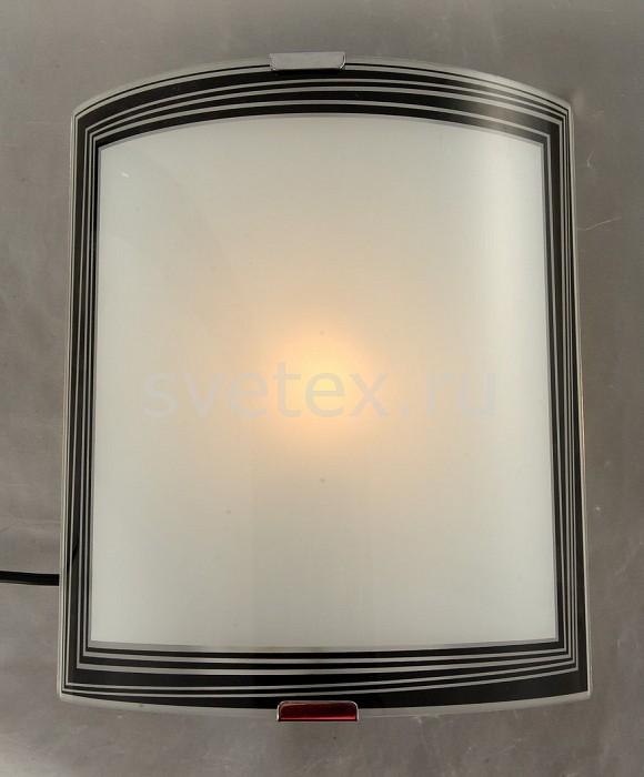 Фото Накладной светильник Blitz Wall&Ceilings 5100 5100-11