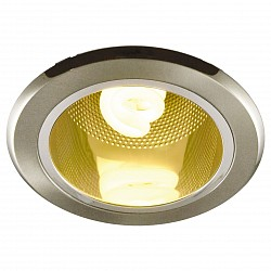 Встраиваемый светильник Arte LampКруглые<br>Артикул - AR_A8044PL-1SS,Бренд - Arte Lamp (Италия),Коллекция - General,Гарантия, месяцы - 24,Диаметр, мм - 150,Тип лампы - компактная люминесцентная [КЛЛ],Общее кол-во ламп - 1,Напряжение питания лампы, В - 220,Максимальная мощность лампы, Вт - 13,Лампы в комплекте - компактная люминесцентная [КЛЛ] E27,Цвет плафонов и подвесок - неокрашенный,Тип поверхности плафонов - прозрачный,Материал плафонов и подвесок - стекло,Цвет арматуры - серебро,Тип поверхности арматуры - матовый,Материал арматуры - сталь,Тип цоколя лампы - E27,Класс электробезопасности - I,Степень пылевлагозащиты, IP - 23,Диапазон рабочих температур - комнатная температура<br>