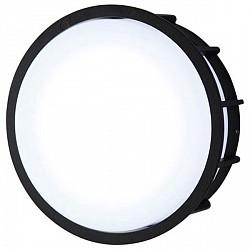 Накладной светильник LArte LuceНакладные светильники<br>Артикул - L78055.31,Бренд - LArte Luce (Италия),Коллекция - Telma,Гарантия, месяцы - 12,Время изготовления, дней - 1,Диаметр, мм - 200,Тип лампы - светодиодная [LED],Общее кол-во ламп - 30,Напряжение питания лампы, В - 220,Максимальная мощность лампы, Вт - 0.2,Лампы в комплекте - светодиодные [LED],Цвет плафонов и подвесок - белый,Тип поверхности плафонов - матовый,Материал плафонов и подвесок - стекло,Цвет арматуры - черный,Тип поверхности арматуры - матовый,Материал арматуры - металл,Возможность подлючения диммера - нельзя,Класс электробезопасности - I,Общая мощность, Вт - 6,Степень пылевлагозащиты, IP - 20,Диапазон рабочих температур - комнатная температура<br>