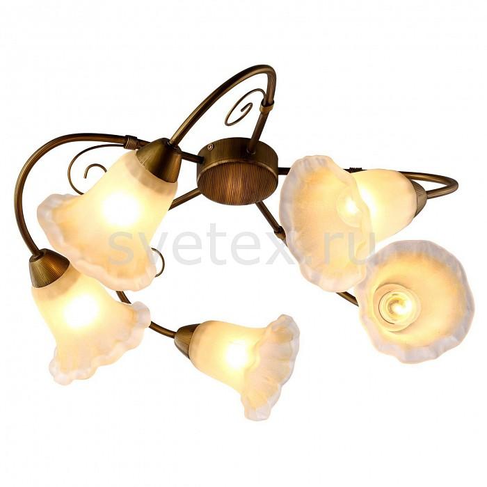 Потолочная люстра Arte LampЛюстры<br>Артикул - AR_A9361PL-5BR,Бренд - Arte Lamp (Италия),Коллекция - Mormorio,Гарантия, месяцы - 24,Время изготовления, дней - 1,Высота, мм - 260,Диаметр, мм - 530,Тип лампы - компактная люминесцентная [КЛЛ] ИЛИнакаливания ИЛИсветодиодная [LED],Общее кол-во ламп - 5,Напряжение питания лампы, В - 220,Максимальная мощность лампы, Вт - 40,Лампы в комплекте - отсутствуют,Цвет плафонов и подвесок - белый,Тип поверхности плафонов - матовый,Материал плафонов и подвесок - стекло,Цвет арматуры - коричневый,Тип поверхности арматуры - матовый,Материал арматуры - металл,Количество плафонов - 5,Возможность подлючения диммера - можно, если установить лампу накаливания,Тип цоколя лампы - E27,Класс электробезопасности - I,Общая мощность, Вт - 200,Степень пылевлагозащиты, IP - 20,Диапазон рабочих температур - комнатная температура,Дополнительные параметры - способ крепления светильника к потолку – на крюке<br>