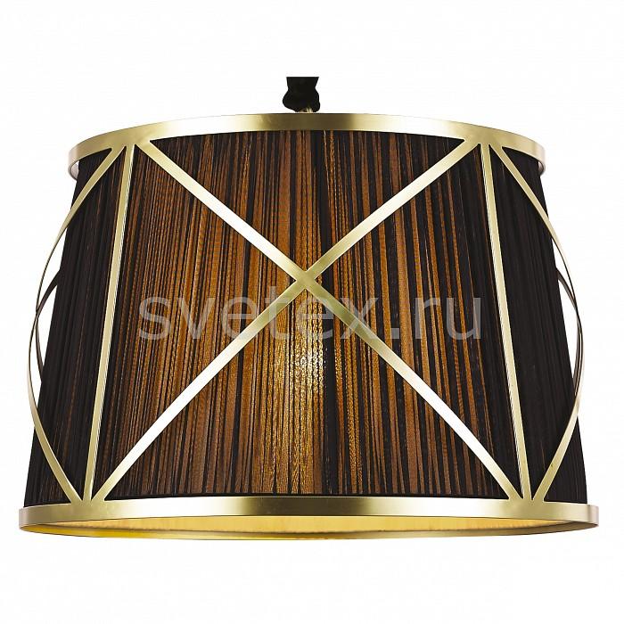 Фото Подвесной светильник Arte Lamp Vitruvio A2805SP-1BK