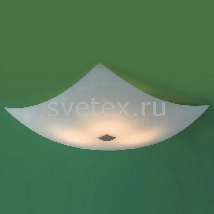 Фото Накладной светильник Citilux 931 CL931011