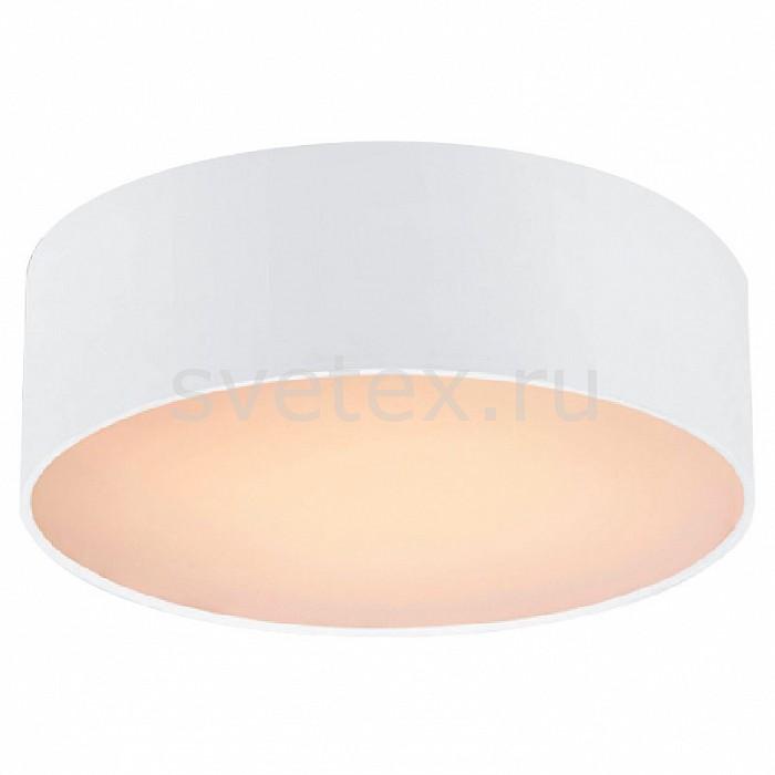 Фото Накладной светильник Favourite Cerchi 1515-2C