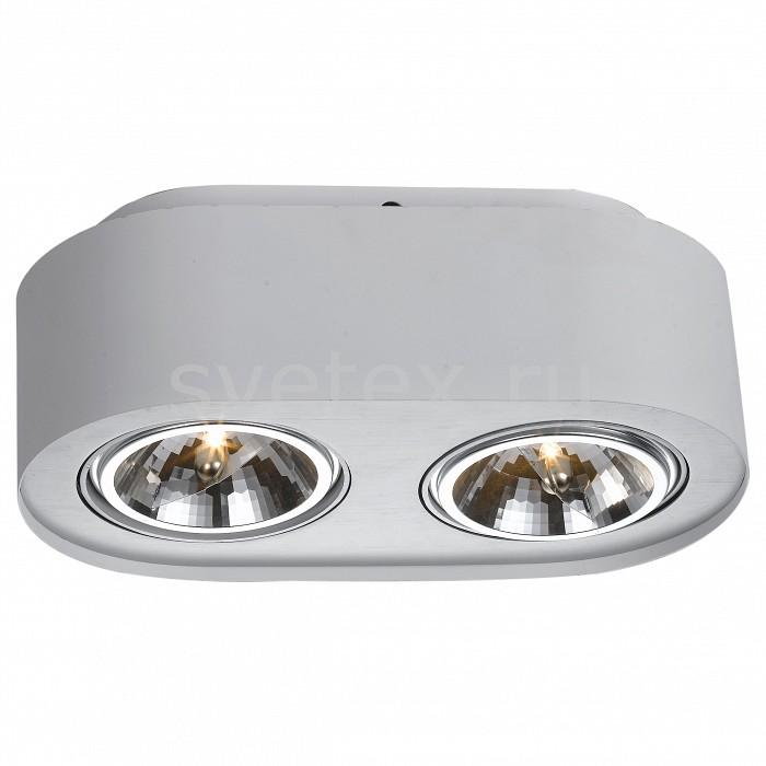 Фото Накладной светильник Arte Lamp Cliff A5643PL-2WH