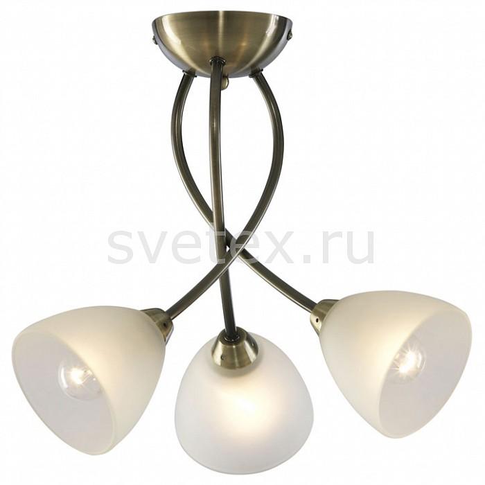 Фото Потолочная люстра Arte Lamp Nikki A2576PL-3AB