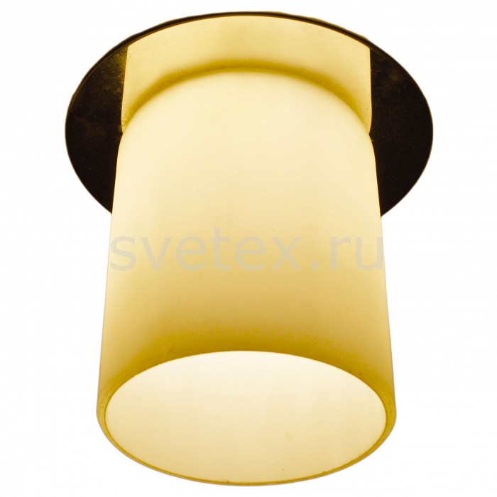 Фото Встраиваемый светильник Arte Lamp Cool Ice 2 A8551PL-1CC