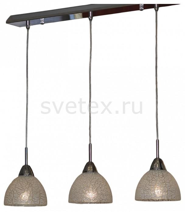 Фото Подвесной светильник Lussole Zungoli LSF-1606-03