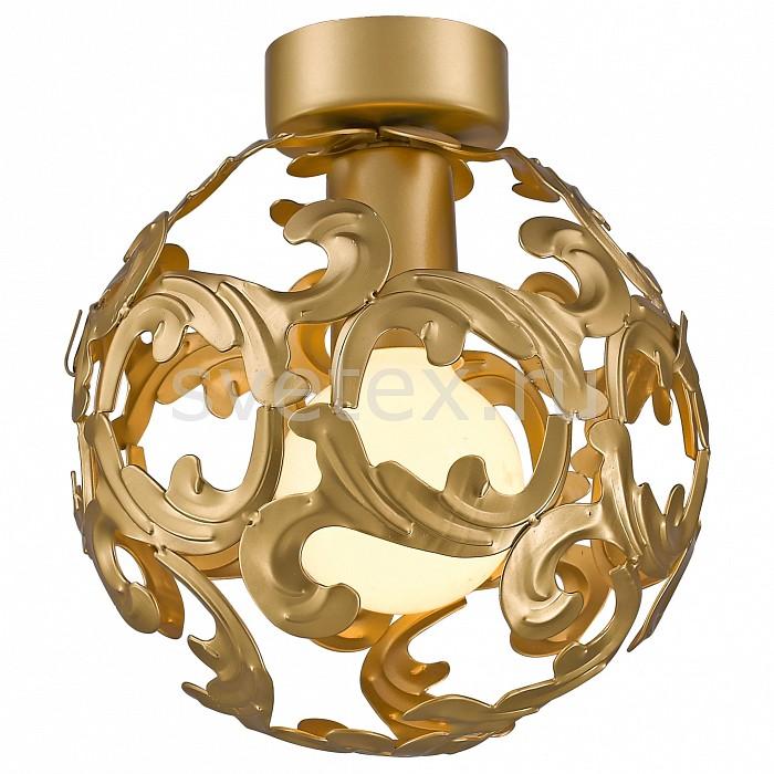 Фото Накладной светильник Favourite Dorata 1469-1U