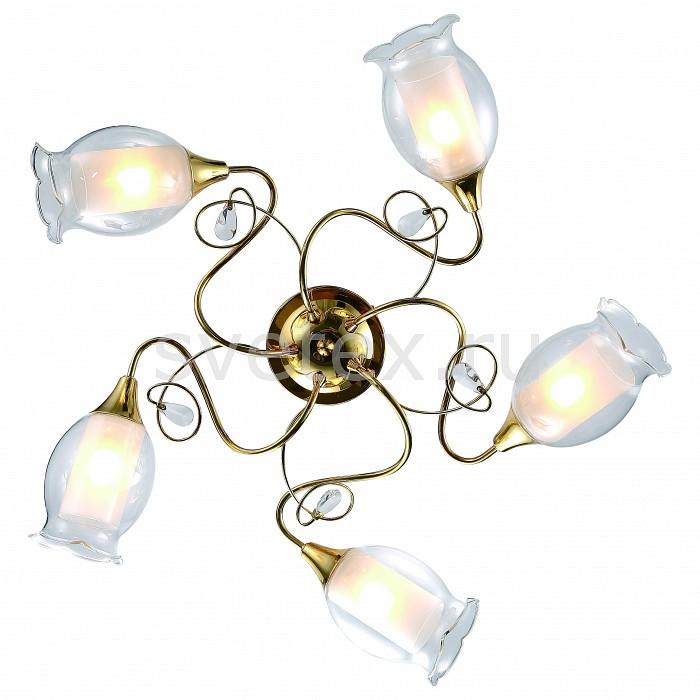 Потолочная люстра Arte Lampлюстра лепестки<br>Артикул - AR_A9289PL-5GO,Бренд - Arte Lamp (Италия),Коллекция - Mughetto,Гарантия, месяцы - 24,Высота, мм - 200,Диаметр, мм - 710,Размер упаковки, мм - 540x540x190,Тип лампы - компактная люминесцентная [КЛЛ] ИЛИнакаливания ИЛИсветодиодная [LED],Общее кол-во ламп - 5,Напряжение питания лампы, В - 220,Максимальная мощность лампы, Вт - 40,Лампы в комплекте - отсутствуют,Цвет плафонов и подвесок - белый, неокрашенный,Тип поверхности плафонов - матовый, прозрачный,Материал плафонов и подвесок - стекло,Цвет арматуры - золото,Тип поверхности арматуры - глянцевый,Материал арматуры - металл,Количество плафонов - 5,Возможность подлючения диммера - можно, если установить лампу накаливания,Тип цоколя лампы - E14,Класс электробезопасности - I,Общая мощность, Вт - 200,Степень пылевлагозащиты, IP - 20,Диапазон рабочих температур - комнатная температура,Дополнительные параметры - способ крепления светильника к потолку - на монтажной пластине<br>