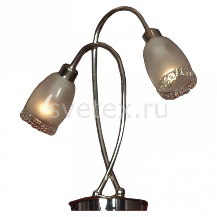 Фото Настольная лампа декоративная Lussole E14 220В 40Вт Bareggio LSL-3204-02