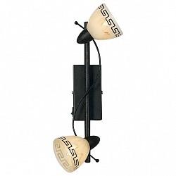 Бра GloboС 2 лампами<br>Артикул - GB_5684-2,Бренд - Globo (Австрия),Коллекция - Roma,Гарантия, месяцы - 24,Высота, мм - 330,Размер упаковки, мм - 330x115x90,Тип лампы - галогеновая,Общее кол-во ламп - 2,Напряжение питания лампы, В - 220,Максимальная мощность лампы, Вт - 40,Лампы в комплекте - галогеновые G9,Цвет плафонов и подвесок - бежевый с коричневым орнаментом,Тип поверхности плафонов - матовый,Материал плафонов и подвесок - стекло,Цвет арматуры - под ржавчину,Тип поверхности арматуры - матовый,Материал арматуры - металл,Возможность подлючения диммера - можно,Форма и тип колбы - пальчиковая,Тип цоколя лампы - G9,Класс электробезопасности - I,Общая мощность, Вт - 80,Степень пылевлагозащиты, IP - 20,Диапазон рабочих температур - комнатная температура,Дополнительные параметры - поворотный светильник, светильник предназначен для использования со скрытой проводкой<br>