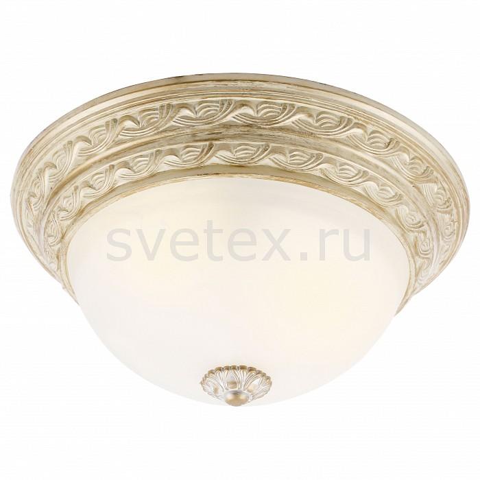 Фото Накладной светильник Arte Lamp Piatti A8013PL-2WA