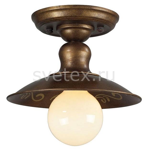 Фото Накладной светильник Favourite Magrib 1214-1U
