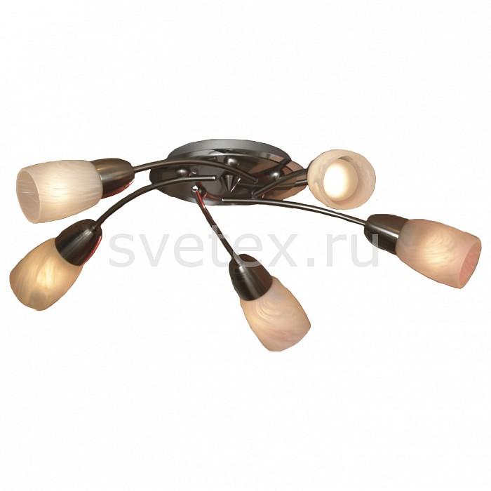 Потолочная люстра LussoleЛюстры<br>Артикул - LSQ-6907-05,Бренд - Lussole (Италия),Коллекция - Cevedale,Гарантия, месяцы - 24,Время изготовления, дней - 1,Высота, мм - 140,Диаметр, мм - 540,Тип лампы - компактная люминесцентная [КЛЛ] ИЛИнакаливания ИЛИсветодиодная [LED],Общее кол-во ламп - 5,Напряжение питания лампы, В - 220,Максимальная мощность лампы, Вт - 40,Лампы в комплекте - отсутствуют,Цвет плафонов и подвесок - алебастр,Тип поверхности плафонов - матовый,Материал плафонов и подвесок - стекло,Цвет арматуры - никель, хром,Тип поверхности арматуры - матовый,Материал арматуры - сталь,Количество плафонов - 5,Возможность подлючения диммера - можно, если установить лампу накаливания,Тип цоколя лампы - E14,Класс электробезопасности - I,Общая мощность, Вт - 200,Степень пылевлагозащиты, IP - 20,Диапазон рабочих температур - комнатная температура<br>
