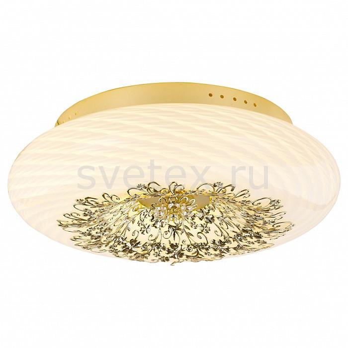 Фото Накладной светильник Arte Lamp Zucca A9111PL-6GO