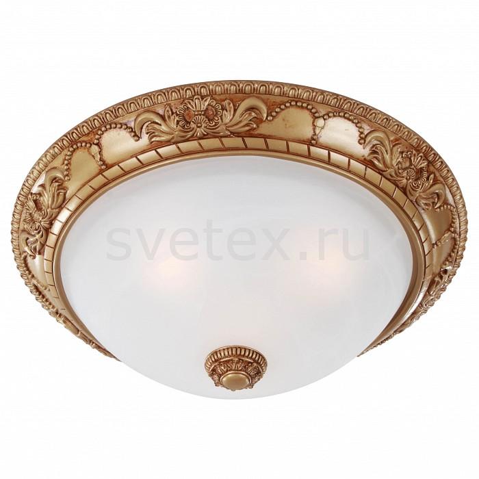 Фото Накладной светильник Favourite Plafond 1447-3C