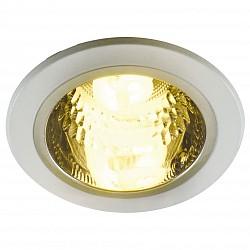 Встраиваемый светильник Arte LampКруглые<br>Артикул - AR_A8044PL-1WH,Бренд - Arte Lamp (Италия),Коллекция - General,Гарантия, месяцы - 24,Диаметр, мм - 150,Тип лампы - компактная люминесцентная [КЛЛ],Общее кол-во ламп - 1,Напряжение питания лампы, В - 220,Максимальная мощность лампы, Вт - 13,Лампы в комплекте - компактная люминесцентная [КЛЛ] E27,Цвет плафонов и подвесок - неокрашенный,Тип поверхности плафонов - прозрачный,Материал плафонов и подвесок - стекло,Цвет арматуры - белый,Тип поверхности арматуры - глянцевый,Материал арматуры - сталь,Тип цоколя лампы - E27,Класс электробезопасности - I,Степень пылевлагозащиты, IP - 23,Диапазон рабочих температур - комнатная температура<br>