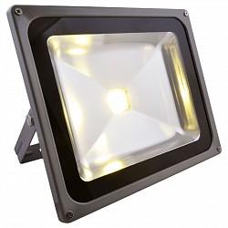 Настенный прожектор Arte LampНастенные прожекторы<br>Артикул - AR_A2550AL-1GY,Бренд - Arte Lamp (Италия),Коллекция - Faretto,Гарантия, месяцы - 24,Время изготовления, дней - 1,Высота, мм - 240,Тип лампы - светодиодная [LED],Общее кол-во ламп - 1,Напряжение питания лампы, В - 220,Максимальная мощность лампы, Вт - 50,Лампы в комплекте - светодиодная [LED],Цвет плафонов и подвесок - неокрашенный,Тип поверхности плафонов - прозрачный,Материал плафонов и подвесок - стекло,Цвет арматуры - серый,Тип поверхности арматуры - глянцевый,Материал арматуры - дюралюминий,Класс электробезопасности - I,Степень пылевлагозащиты, IP - 65,Диапазон рабочих температур - от -40^C до +40^C<br>