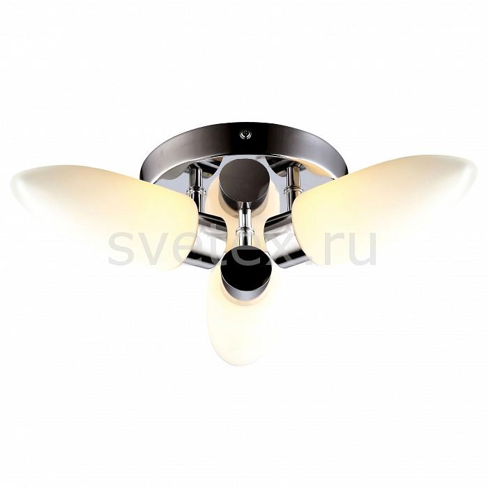 Фото Накладной светильник Arte Lamp Aqua A9502PL-3CC