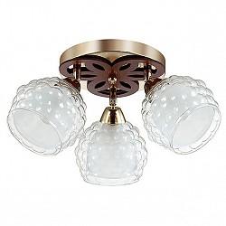 Спот LumionС 3 лампами<br>Артикул - LMN_3057_3C,Бренд - Lumion (Италия),Коллекция - Federro,Гарантия, месяцы - 24,Диаметр, мм - 450,Размер упаковки, мм - 590x210x210,Тип лампы - компактная люминесцентная [КЛЛ] ИЛИнакаливания ИЛИсветодиодная [LED],Общее кол-во ламп - 3,Напряжение питания лампы, В - 220,Максимальная мощность лампы, Вт - 60,Лампы в комплекте - отсутствуют,Цвет плафонов и подвесок - белый, неокрашенный,Тип поверхности плафонов - матовый, прозрачный, рельефный,Материал плафонов и подвесок - стекло,Цвет арматуры - золото, коричневый,Тип поверхности арматуры - матовый, металлик,Материал арматуры - металл,Возможность подлючения диммера - можно, если установить лампу накаливания,Тип цоколя лампы - E14,Класс электробезопасности - I,Общая мощность, Вт - 180,Степень пылевлагозащиты, IP - 20,Диапазон рабочих температур - комнатная температура,Дополнительные параметры - способ крепления к потолку и стене - на монтажной пластине, поворотный светильник<br>