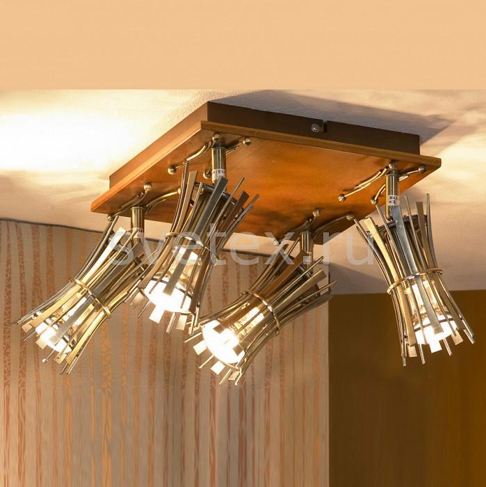 Фото Накладной светильник Lussole Offagna LSL-8401-04