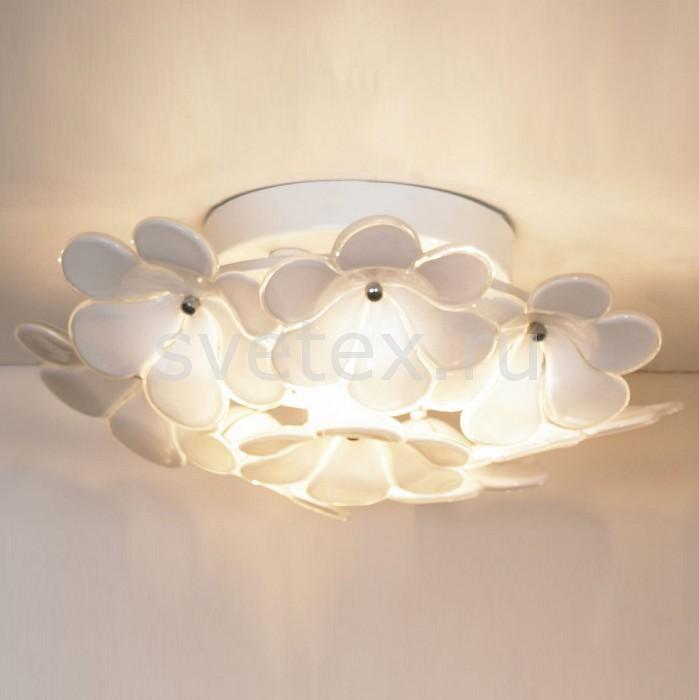 Фото Накладной светильник Lussole Asinara LSA-5107-03